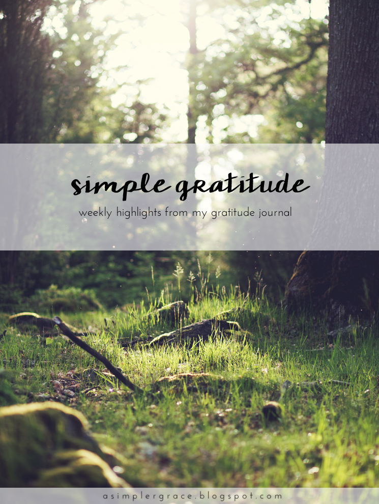 A weekly series focusing on practicing gratitude.  #gratefulheart #gratitude #feelingthankful - Simple Gratitude | 46 - A Simpler Grace