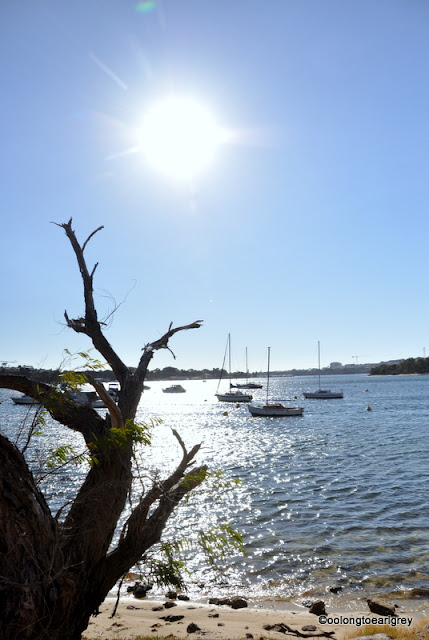 Bicton Foreshore, Swan River, Western Australia