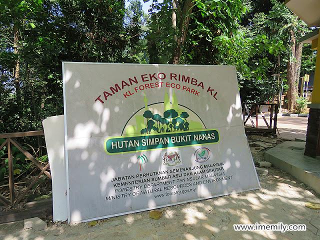 Bukit Nanas Eco Park, KL