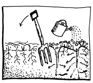 Our Permaculture Life: Morag's Simple & Successful No-Dig