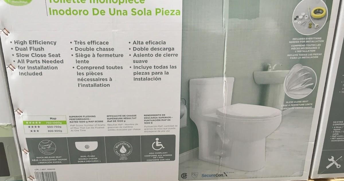 Waterridge One Piece Dual Flush Toilet Costco Weekender