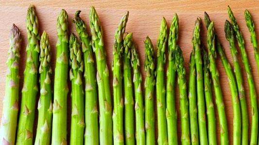 Kuşkonmaz Bitkisi (Asparagus Officinalis) Hakkında Bilgi