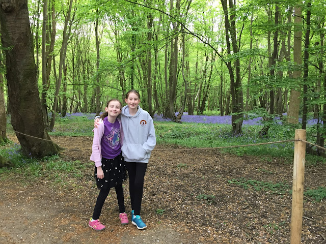 Stephs Two Girls in Bluebell wood