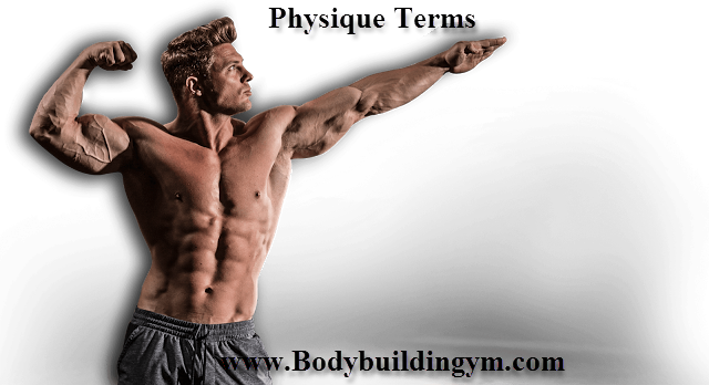 Terms of Physique