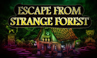 Top10 Escape From Strange Forest