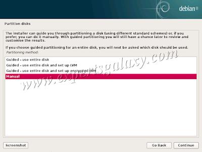 Debian Linux Partition Disks