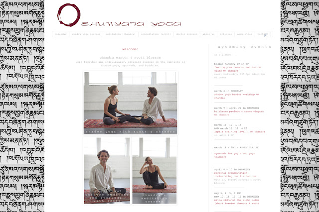 Bureau Jules web design shop in San Francisco yoga photography for Shunyata Yoga