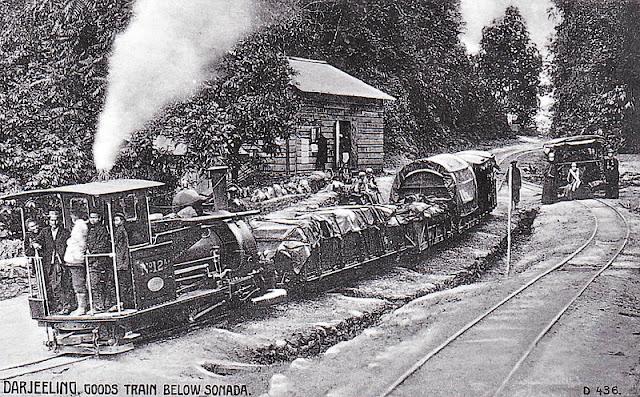 darjeeling goods train sonada