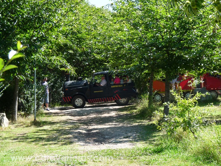 Foto del trenecito. Camping Rural Ría de Arosa | caravaneros.com