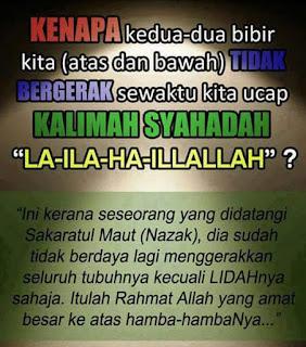 Jika ada kesempatan yang kemudian menawarkan gambar kata bijak islami Rangkaian Gambar Kata Mutiara Islami