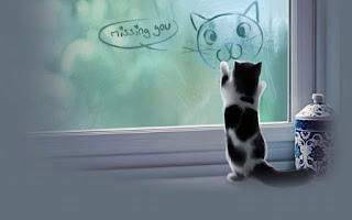 image of cat drawing another cat face on the window glass with missing you text