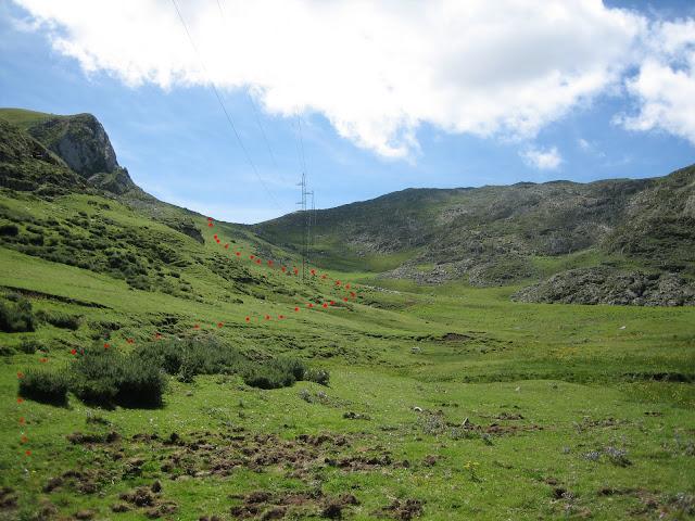 Rutas Montaña Asturias: Plano del Toneyo, en la senda del Arcediano, camino al Canto Cabronero