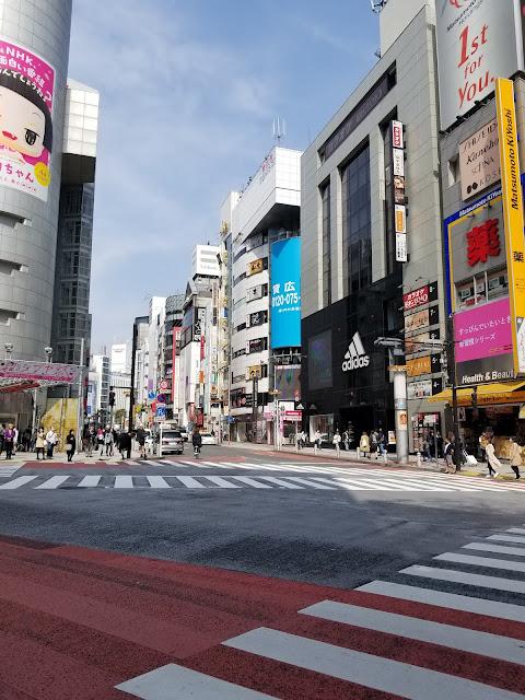 Shibuya Crossing, Cruce, Scramble Crossing, Cruce Revuelto, Shibuya, Paso de Cebra, Hachiko, Tokio, Tokyo, Japon, Japan, Visit Japan, Elisa N, Blog de Viajes, Lifestyle, Travel, Shibuya 109, Forever 21, perro, perrito