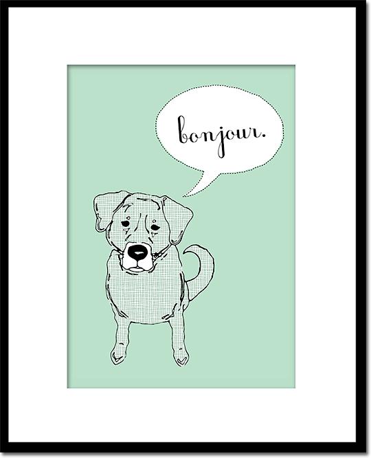 Bonjour Dog