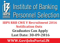 IBPS RRB CWE V Recruitment 2016 Notification Outs