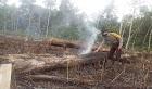 Cegah Karhutla, Bhabinkamtibmas Cek Titik Api di Desa Tapang Semadak
