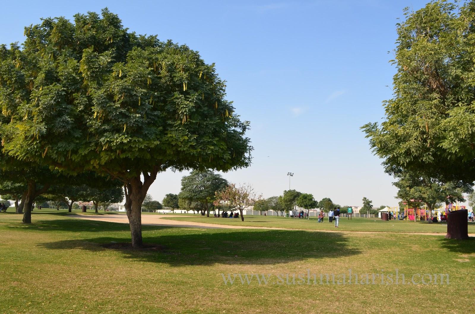 The Fairy Tale Park Of Doha 28