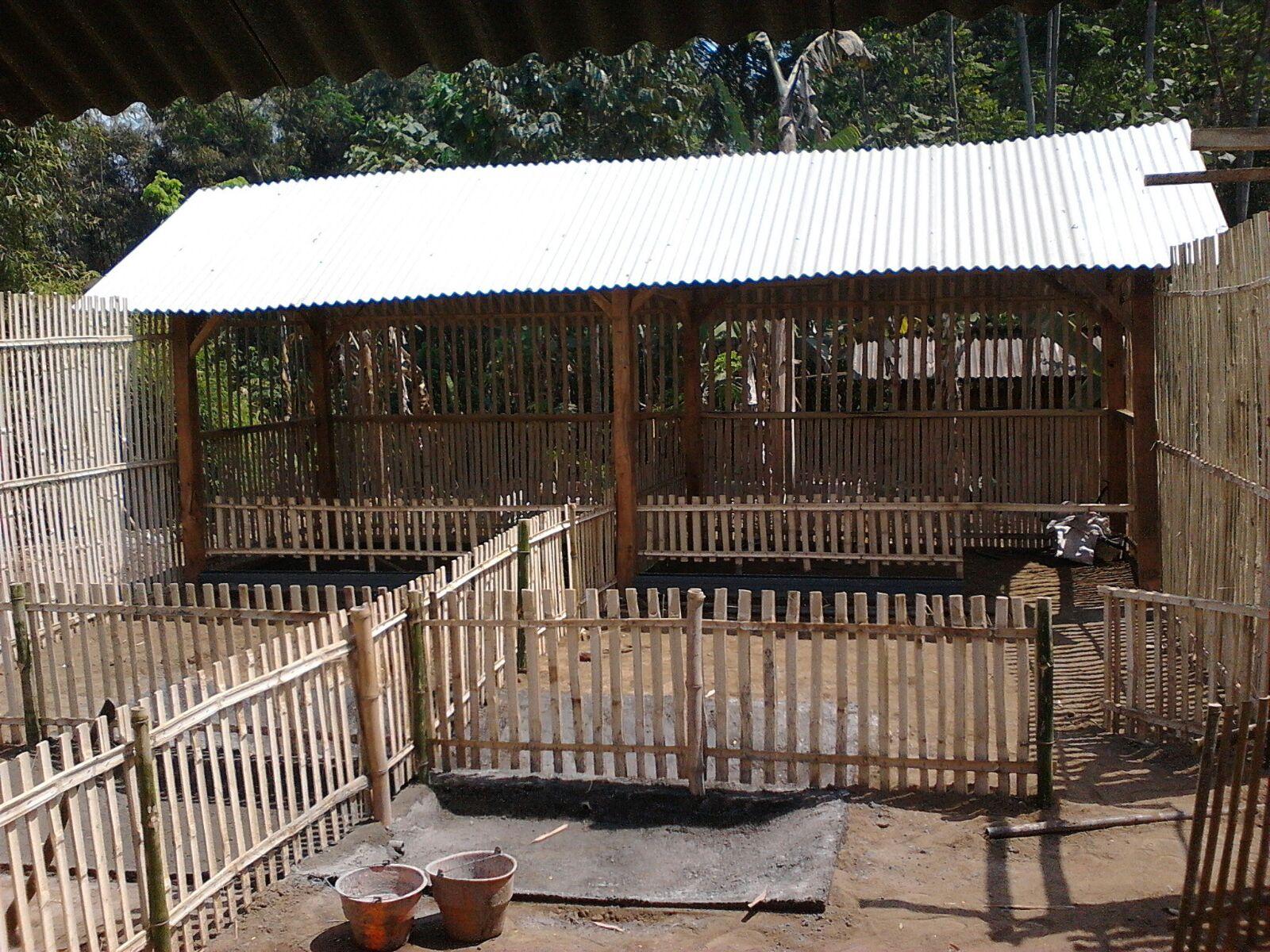 Panti Asuhan Ati Wening: Kandang Bebek