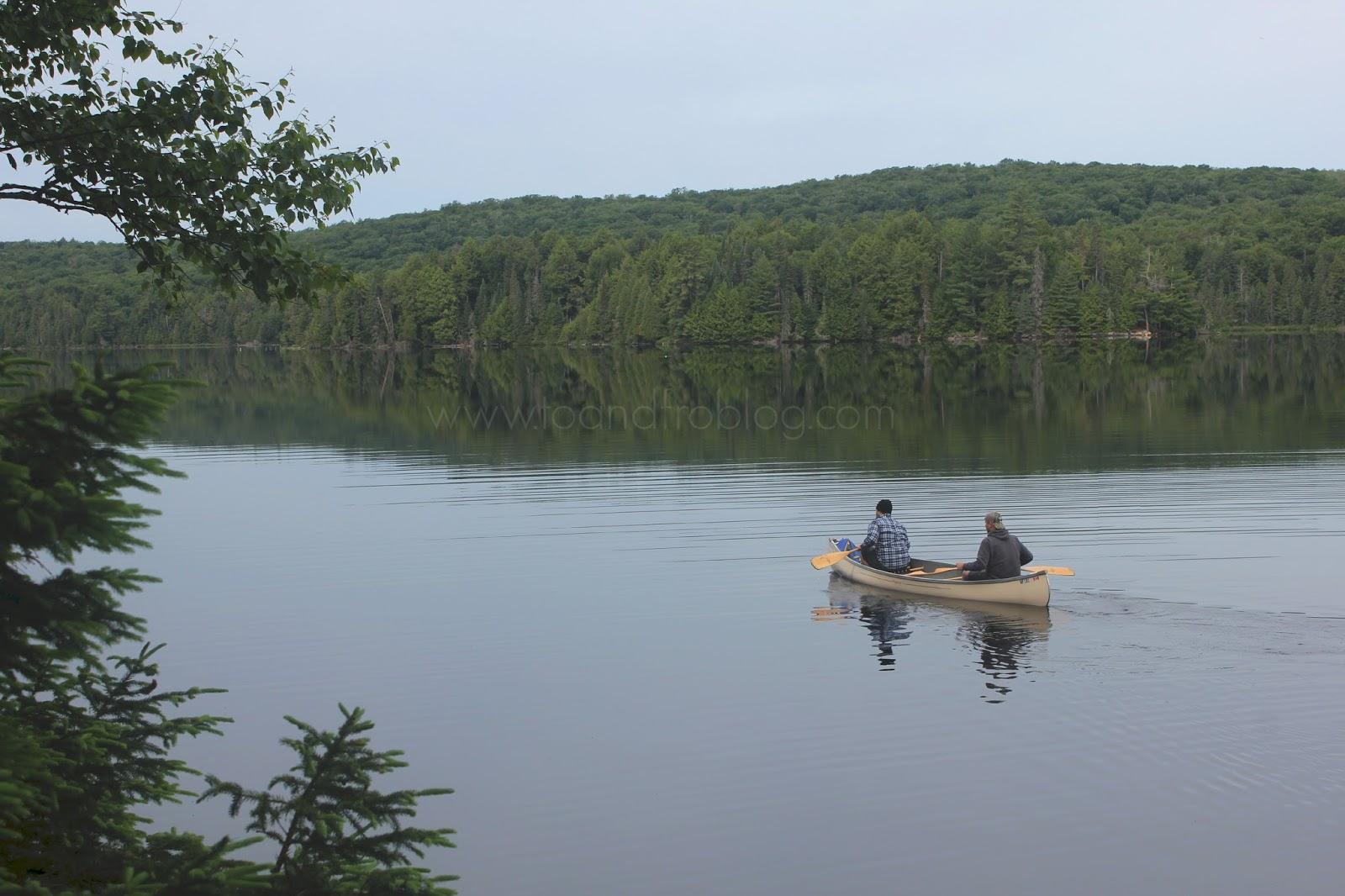 canoeing in algonquin provincial park, ontario canada