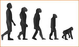 FALSO EVOLUCIONISMO