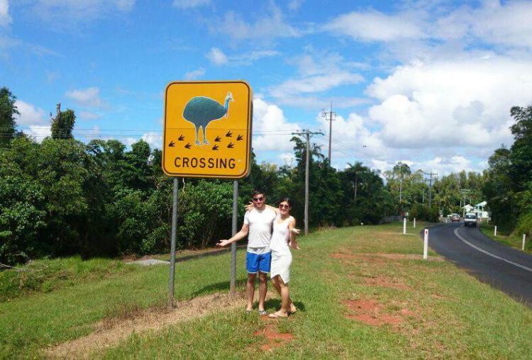 cassowary, Mission Beach, Australia, Euriental