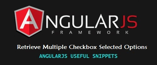AngularJS : Retrieve Multiple Checkbox Selected Options