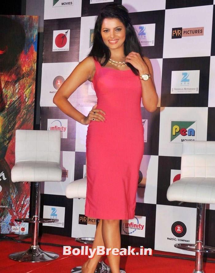 Tripta Parashar, Pics from 'Rang Rasiya' Music Launch