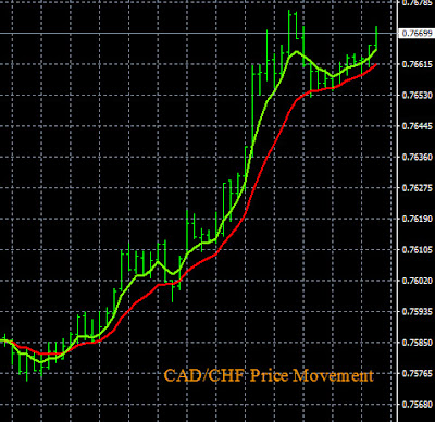 Forex Momentum Trading