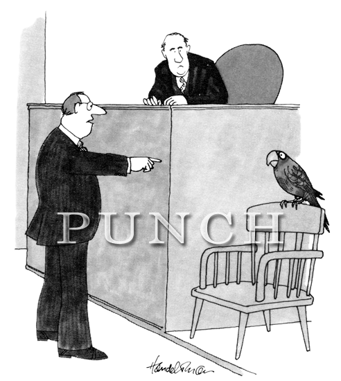 A parrot giving testimony in a court dispute.