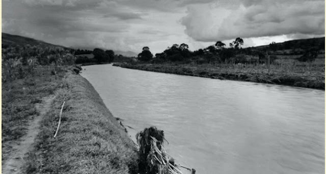 Los pueblos antiguos organizaban su vida alrededor del agua. Ésta les facilitaba alimento como peces, tortugas, patos, cangrejos, entre otros.