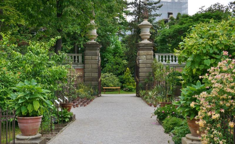 sendero solado en el jardín botánico de Padua