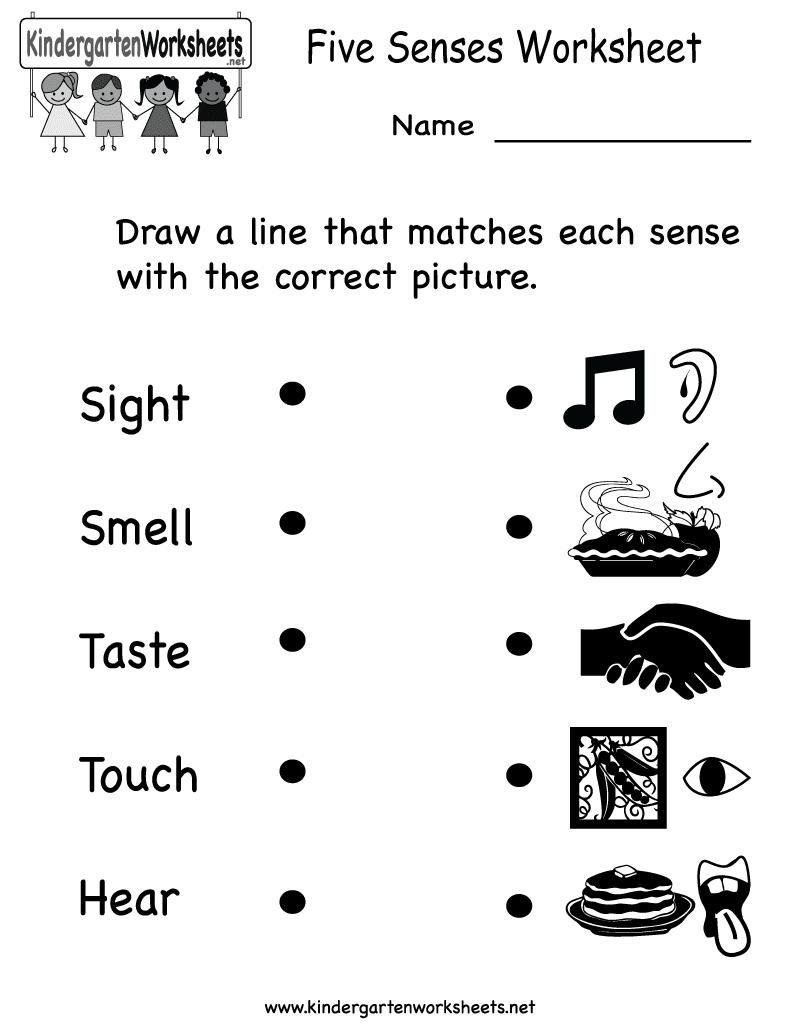 Senses and Feelings | Worksheet | Education.com |Worksheets About Senses