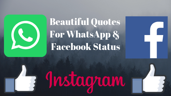 Beautiful Quotes For Facebook Status: Beautiful Quotes For WhatsApp And