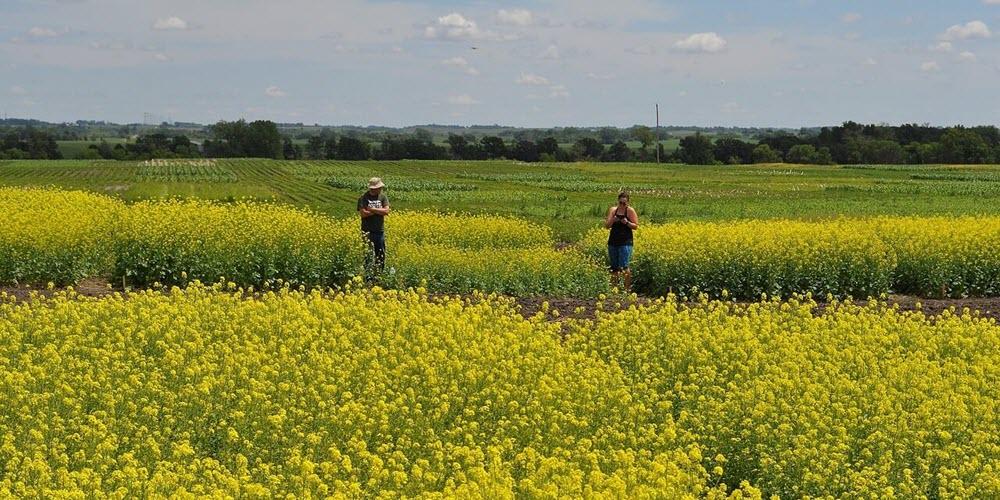 Tecnología y naturaleza, aliados de la agricultura inteligente para adaptarse al clima