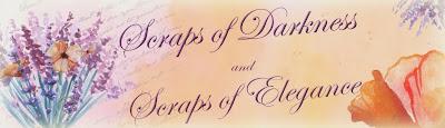 Scraps of Darkness and Scraps of Elegance