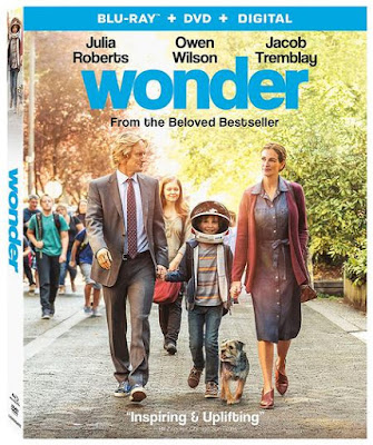 Wonder 2017 Eng BRRip 480p 300Mb ESub x264