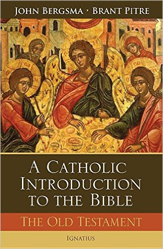 Amazon.com: catholic old testament study bible: Books