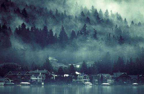 Fog, Lake Sammamish, Washington