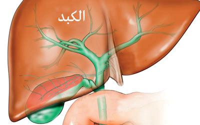 بما أوصانا الرسول (ص) حتي لا نصاب بالتليف الكبدي