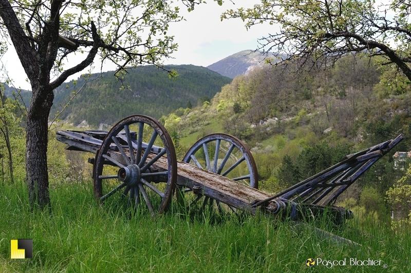 charrette ancienne dans l'herbe photo pascal blachier