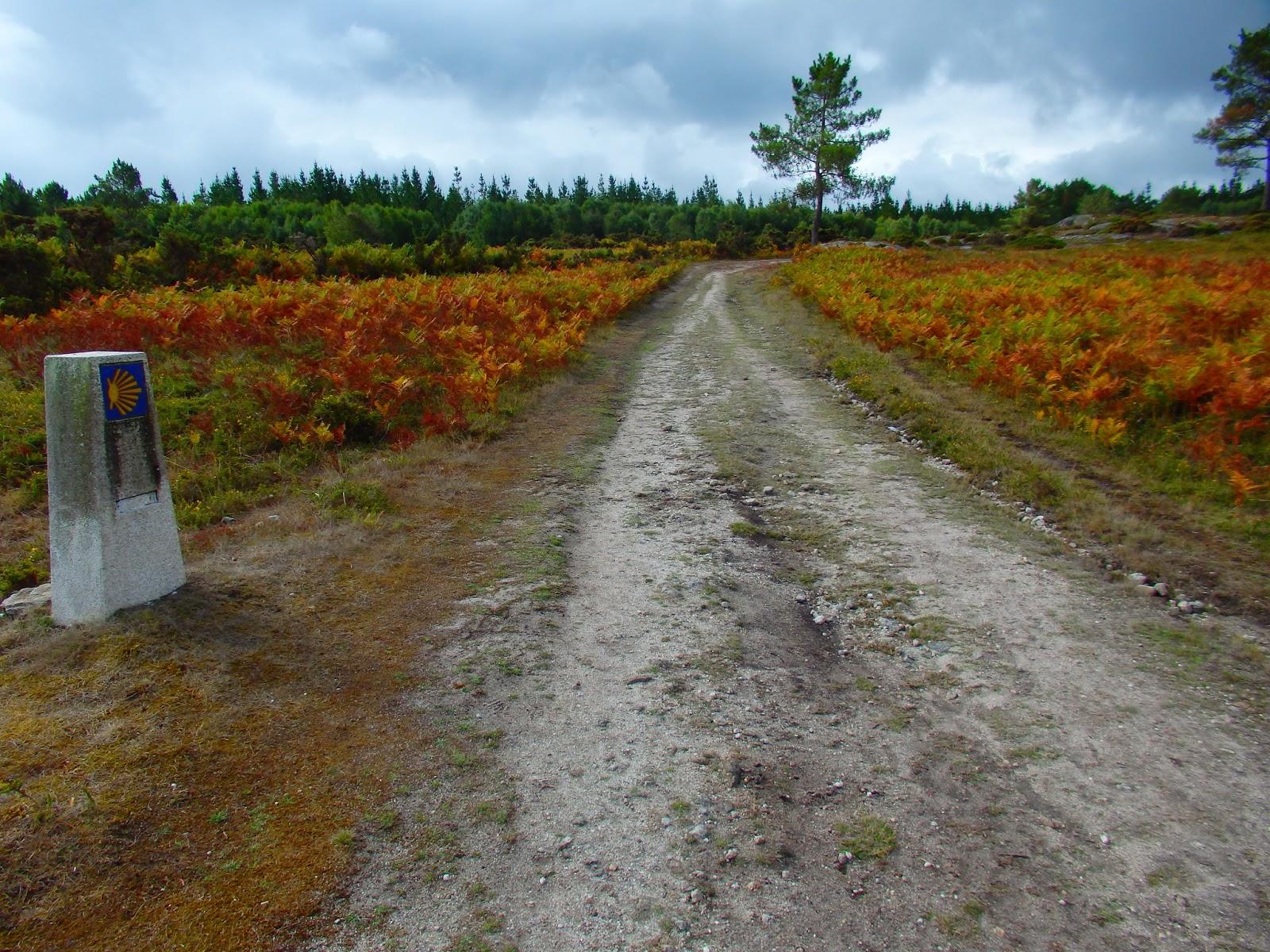 Alto Da Mamoa Y A Serra Da Cova Da Serpe Las Leyendas De La Serpiente Devoradora Divisoria Entre Lugo Y A Coruna Galicia
