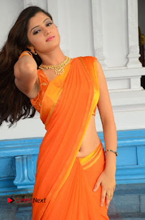 Actress Akishitha Pictures in Saree at Prayanam Movie Opening  0076