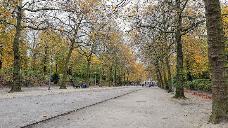 布魯塞爾公園 (Brussels Park),秋天的氣息