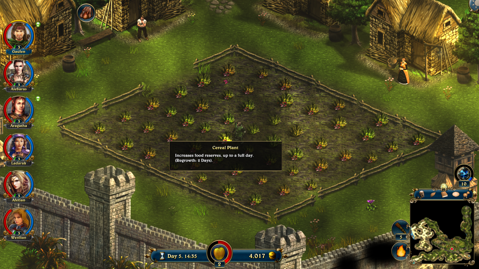Cereal plant field in Lords of Xulima.