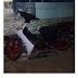 Menor é detido de posse de motocicleta com CHASSI adulterado na ponte nova, em Belo Jardim, PE