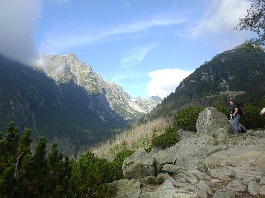 Dolina Staroleśna (widok ze szlaku do Schroniska Zamkovskiego)