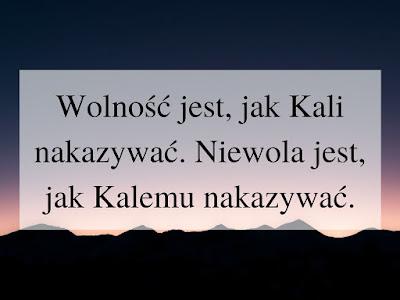 kalizm, Cejrowski, wolność, propaganda antyszczepionkowa, dziennikarze i media, Ciemnogród