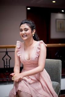 megha chowdhury (7)