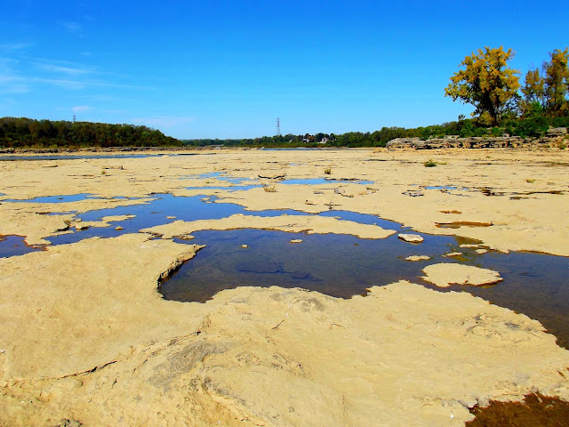 Fossil Beds at Falls of the Ohio State Park - Clarksville, Indiana