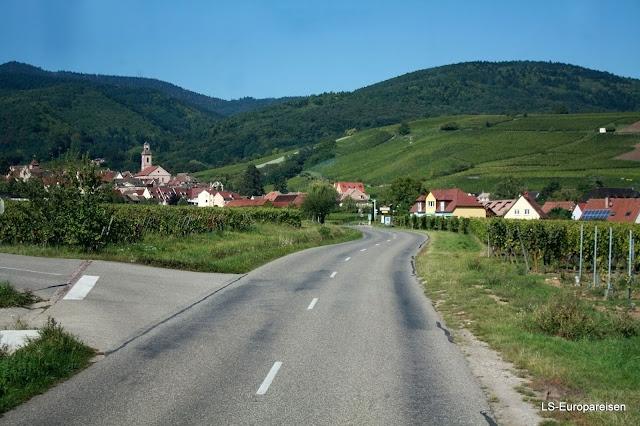 дорога вин Эльзаса, куда поехать, что посмотреть, Эльзас, Франция, аисты, вино
